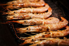 Delicious langoustines  on grill Stock Photo