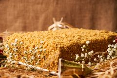 Delicious layered honey cake with sour cream Stock Photo