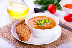 Delicious lentil cream-soup with vegetables and toast. Lentil cream soup with vegetables and toast Stock Photography