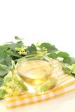 Delicious lime blossom tea Stock Photography