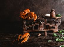 Delicious lobsters on vintage scales and basil leaves on rustic wooden table. Close-up view of delicious lobsters on vintage scales and basil leaves on rustic Royalty Free Stock Image