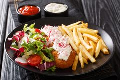 Delicious lunch of roasted pollock breaded with french fries and fresh salad close-up on a plate and sauces. horizontal royalty free stock photos