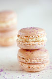 Delicious macarons Royalty Free Stock Photos