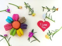 Delicious macaroon, beautiful wallpaper, pastel flowers Royalty Free Stock Photo