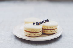 Delicious macaroons decorated with lavender on white china plate Royalty Free Stock Photography