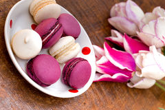 Delicious macaroons - macarons and tulips Stock Photo