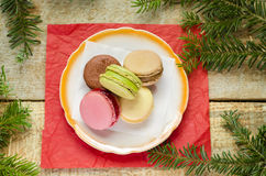 Delicious macaroons on plate, pine trees in corners Stock Photos
