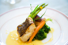 Delicious main course gourmet Stock Images