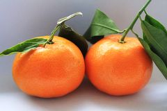 Delicious mandarin orange Stock Photos