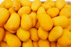 Delicious mango. A pile of fresh and delicious mango Royalty Free Stock Images