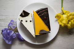 Delicious mango and choco cheesecakes closeup Royalty Free Stock Images