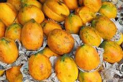 Delicious papaya on indian farmer market Stock Photo
