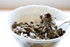 Delicious marinated mushrooms with onions in a plate, on a fork stock photo