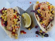 Two flavorful fish tacos in soft tortillas covered with vegetables and dressing royalty free stock image