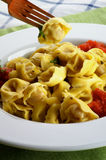 Delicious Meat Cappelletti Royalty Free Stock Image