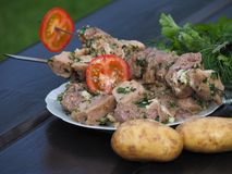 Delicious meat in a marinade with seasonings and tomatoes stock images