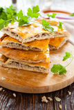 Delicious meat pie slices and parsley Stock Image