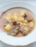 Delicious meat soup in dish Royalty Free Stock Photo
