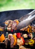 Delicious Meat spits Royalty Free Stock Photo