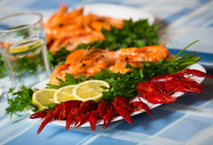 Delicious Mediterranean seafood shrimps and crawfish close up Royalty Free Stock Images