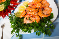 Delicious Mediterranean seafood shrimps and crawfish close up Stock Image