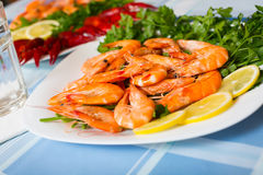 Delicious Mediterranean seafood shrimps and crawfish close up. Boiled shrimps and crayfish served with parsley and lemon slices Royalty Free Stock Photography