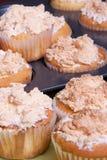 Delicious Meringue Cupcakes Stock Image