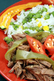Delicious mexican beef plate Stock Images