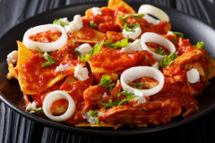 Delicious mexican food: nachos with tomato salsa, chicken and ch. Eese close-up on a plate. horizontal royalty free stock photos