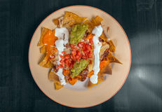 Delicious mexican food on a plate Royalty Free Stock Image