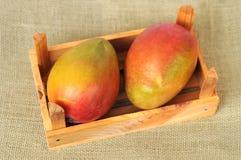 Delicious Mexican mango Stock Image
