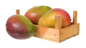 Delicious Mexican mango Stock Images
