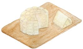 Delicious Mexican panela cheese royalty free illustration