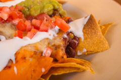 Delicious mexicana food Stock Image