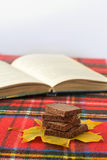 Delicious milk dark chocolate on maple leaf shallow depth of field. Piece of milk dark chocolate on maple leaf and book on red checkered tablecloth Stock Image