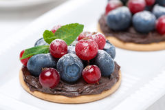 Delicious mini cakes with chocolate cream and berries Stock Image