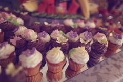 Delicious mini muffins Royalty Free Stock Photos