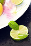 Delicious mint and lime fruits. Royalty Free Stock Photos