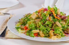 Delicious mixed salad with fried crunchy croutons Stock Photography