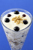Delicious mixed yogurt and granola Royalty Free Stock Photography