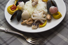 Delicious molluscs and rice Stock Images