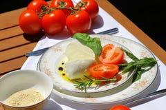 Delicious mozzarella cheese Royalty Free Stock Image