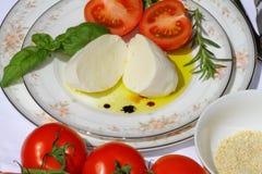 Delicious mozzarella cheese Stock Images