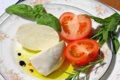 Delicious mozzarella cheese Royalty Free Stock Photography