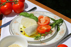Delicious mozzarella cheese Royalty Free Stock Photo