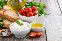 Delicious mozzarella and ingredients for a salad on wooden table Royalty Free Stock Image