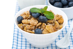Delicious muesli with fresh blueberries, close-up, isolated Royalty Free Stock Image