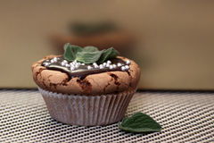 Delicious muffin cupcake mint with melted chocolate Royalty Free Stock Image