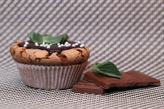Delicious muffin cupcake mint with melted chocolate Stock Images