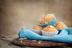 Delicious muffins Stock Photo